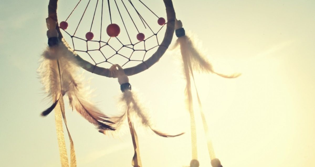 Enliven Empower Healing You Dreamcatcher