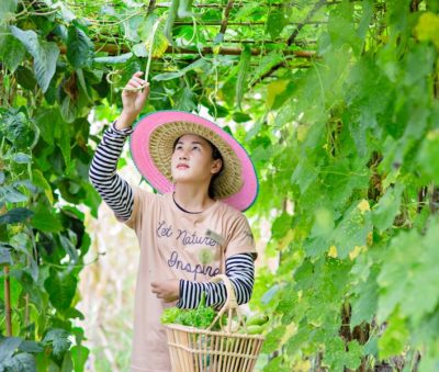 Chiang Rai Farm to Table Museflower Retreat & Spa