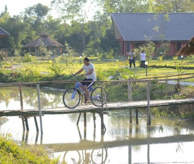 Cycling Guided Bike Tours Rental Museflower Retreat & Spa
