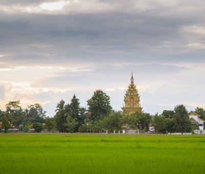 Visit Chiang Rai Rice Fields Temples Museflower Retreat & Spa