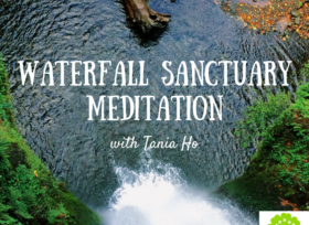 museflower retreat and spa free guided meditation download waterfall sanctuary meditation by tania ho
