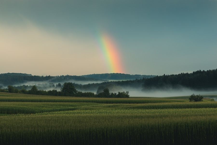 museflower-retreat-and-spa-be-patient-with-discomfort-rainbow-comes-after-thunderstorm.jpg#asset:3828